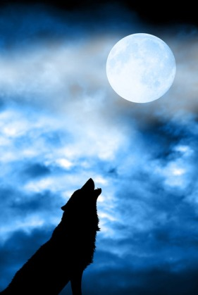 Wolf in silhouette howling at full moon