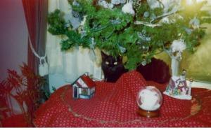 Onyx, Christmas 2002