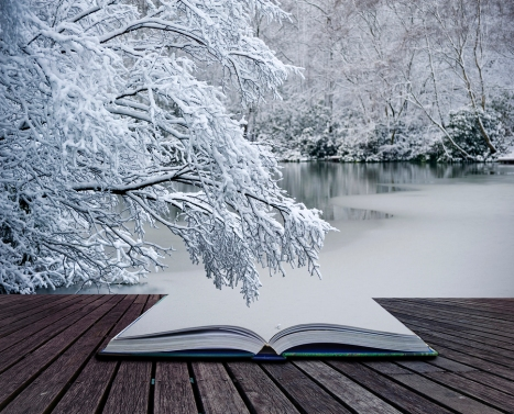 Creative concept idea of Winter landscape coming out of pages in