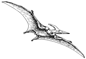 800px-Pterodactyl_(PSF)