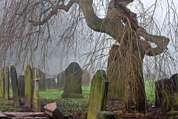 bigstock-Spooky-Old-Cemetery-On-A-Foggy-40839520