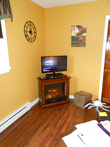 Corner fireplace with flatscreen TV