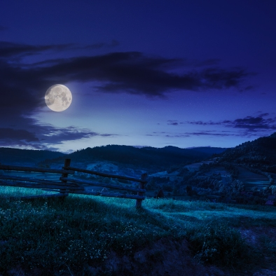 wooden fence in the grass on the hillside near the village at night in moon light