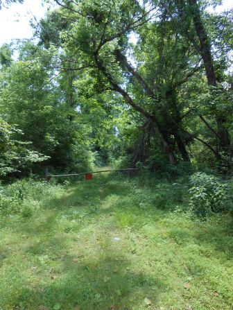 Densley wooded area with an old barrier blocking an overgrown path