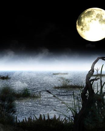 swamp with fog and full moon above