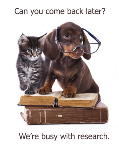 Cute kitten and dachshund wearing glasses on open book with another book beneath