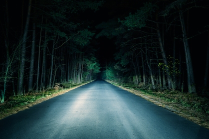 Night road cutting through dark wooded setting, illuminated by headlights