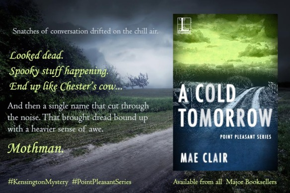 Banner Ad for A Cold tomorrow by Mae Clair features road through a meadow near few trees and foggy in forest at night
