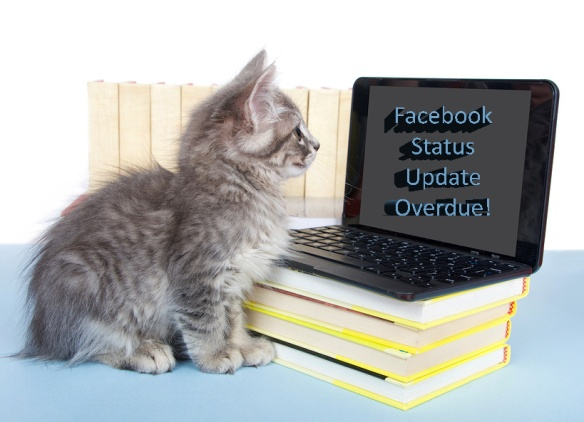 Gray tabby kitten looking at screen on a miniature laptop with words Facebook Status Update Overdue displayed on monitor. Piles of books next to and under computer.