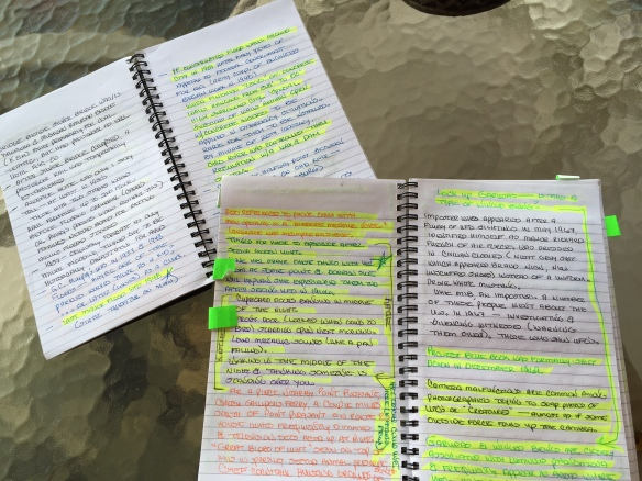 Two spiral notebooks open on spine with pages filled with writing and some passages highlighted