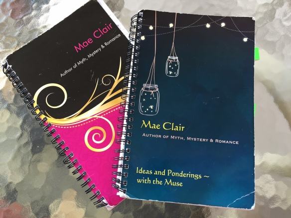 Two closed spiral notebooks, covers a bit battered
