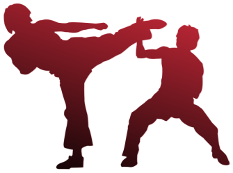 Silhouette of two men engaged in martial arts