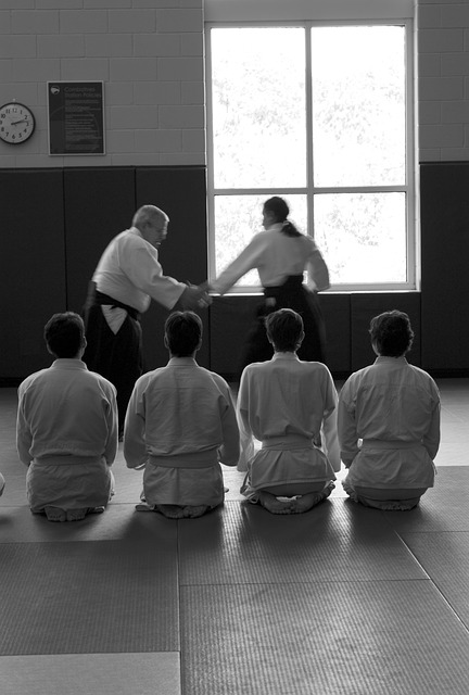 Students in a martial arts class watching two men practice