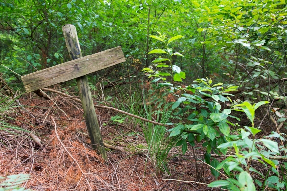 Simple wooden cross on nature grave in the forest