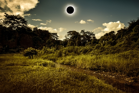 Total solar eclipse glowing on sky above wilderness in forest. Amazing scientific natural phenomenon when moon passes between planet earth and sun. Serenity nature background.