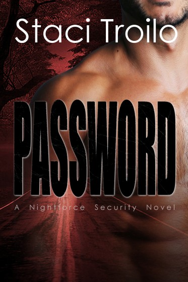 book cover for Password, a romantic thriller by Staci Troilo