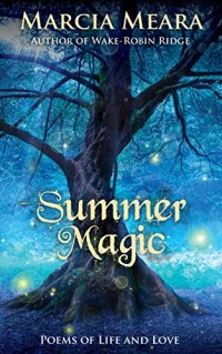Book cover for Summer Magic by Marcia Meal shows tree at night, backlit by starry sky