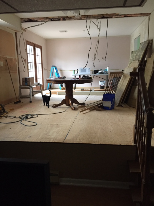 Room the has been gutted for remodeling, wires hanging from ceiling, plywood subfloor, ladder and tools about
