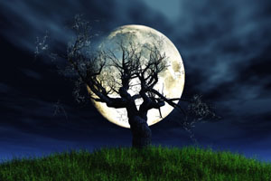 Leafless barren tree in front of oversized full moon iat night