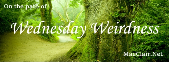 "pathway between large, gnarled trees with wacords ""on the path of Wednesday Weirdness"" superimposed over image"