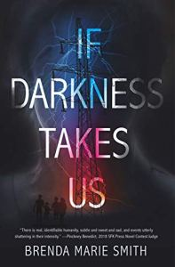 Book cover for If Darkness Takes Us by Brenda Marie Smith shows high tension utility tower shrouded in darkness
