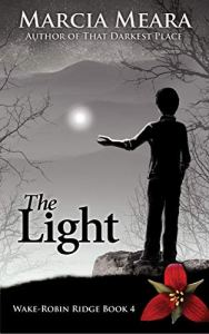 Book cover for The Light by Marcia Meara shows young boy standing on a rock with hand extended toward a floating orb of light