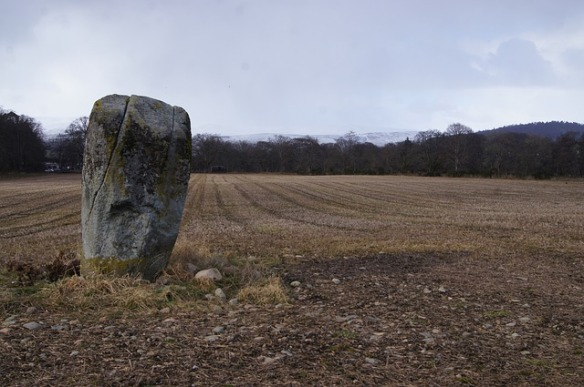 Large standing stone in a field of browned grass