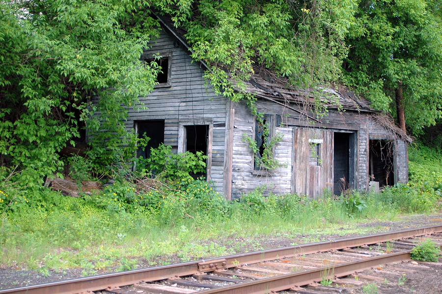 abandoned building overgrowin with trees and vines along railroad tracks