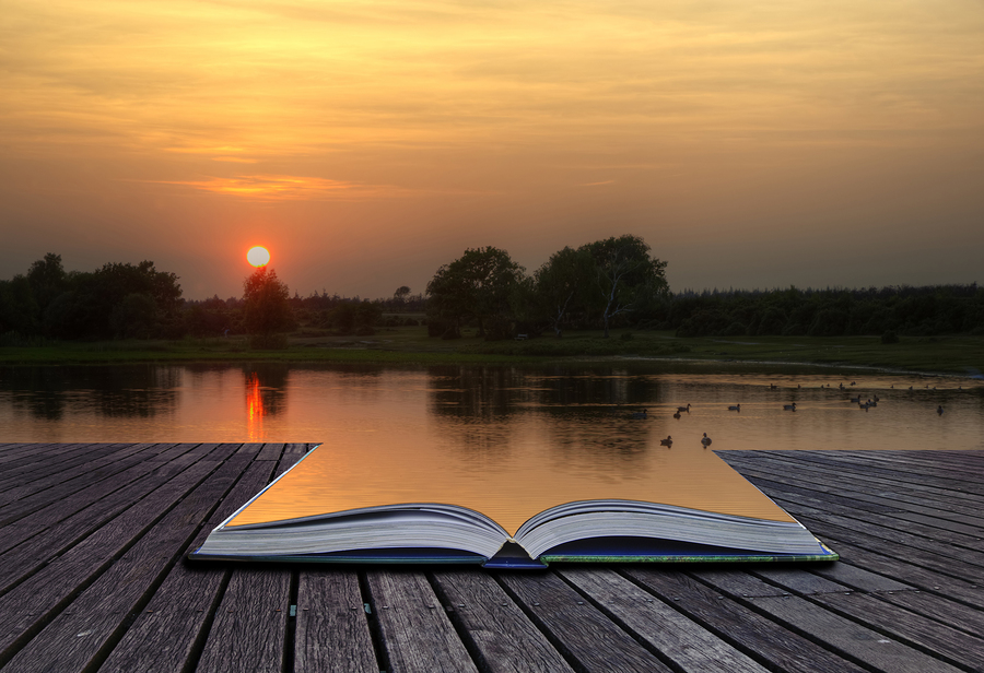 Creative concept of book open on a dock by lake with pages of book part of lake. Sunset setting with ducks on lake